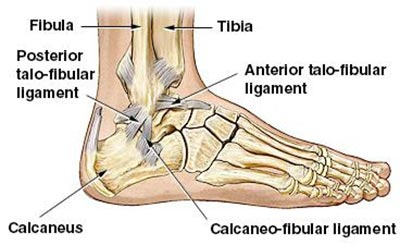 Foot Injuries Specialist NYC